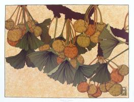 Ginkgo in Autumn by Anita Munman