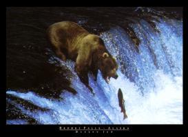 Brooks Falls, Alaska by Darren Jew